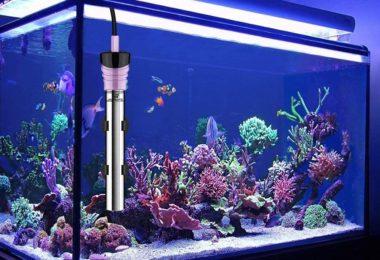 chauffage d'aquarium